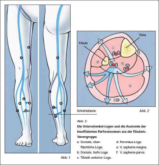 med-report – riassunti di pubblicazioni mediche e di studi clinici ...